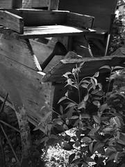 _1020269 (Akiha.) Tags: street blackandwhite old classic