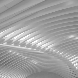 Cathedral of Light - Calatrava NYC #2