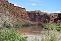 Colorado River (xalub33) Tags: colorado coloradoriver river summer water ngc