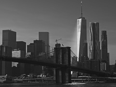 B0000139 (Joseph W. Stampfl) Tags: hasselblad cfv50c new york ny brooklyn bridge freedom tower ground zero black white god rays