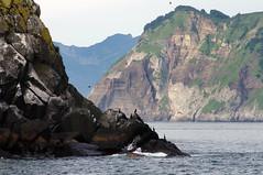IMGP7340 (myauchilo) Tags: travelling kamchatka russia rocks