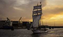 Abends auf der Elbe (petra.foto busy busy busy) Tags: elbe flus hamburg hafen sonnenuntergang segelschiff traditionssegler fotopetra 5dmarkiii schiffe