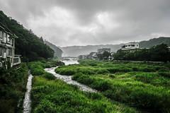 Grey and Green (Jean I Cresol) Tags: july 15th 2016 river misasa misasatown tottori japan chugoku sanin asia nature town hdr