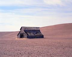 Desiccated (Pedalhead'71) Tags: pentax6x7 kodakektar100 epsonv800 silverfast8 analog film landscape barn