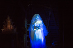 The Bride (Jared Beaney) Tags: disney disneythemeparks magickingdom waltdisneyworld hauntedmansion bride ghost attic libertysquare darkridephotography darkride themeparks