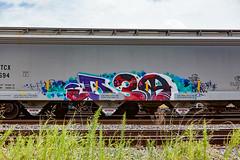 (o texano) Tags: houston texas graffiti trains freights bench benching d30