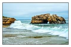 High Tide @ Natural Bridges (AliTalley) Tags: ocean santacruz beach coast sand waves pacific wave pacificocean hightide naturalbridges