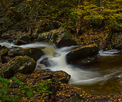 Pocono mountain stream (Life seen through a lense 06) Tags: autumn fallleaves fall nature outdoors pennsylvania fallcolors autumnleaves autumncolors fallfoliage poconos