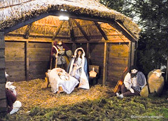"Christmas : Nativity Family • <a style=""font-size:0.8em;"" href=""http://www.flickr.com/photos/44019124@N04/8174816253/"" target=""_blank"">View on Flickr</a>"