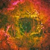 The Heart Of A Rose (The Rosette Nebula in CFHT Palette) (Terry Hancock www.downunderobservatory.com) Tags: camera sky canada france monochrome night stars photography mono hawaii pier back backyard fotografie photos thomas space shed band science images astro apo m observatory telescope national nebula astrophotography astronomy imaging ccd universe rosette narrow cosmos geographic palette paramount luminance the lodestar teleskop astronomie byo refractor deepsky f55 cfht monoceros halpha ngc2237 ngc2244 astrograph autoguider starlightxpress ngc2238 ngc2239 ngc2246 tmb92ss caldwell49 mks4000 gt1100s qhy9m