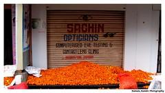 Happy Diwali 2012 - Flower Bed (Raman_Rambo) Tags: road flowers india flower happy bed celebration celebrations ganesh program diwali cultural mandir ganapati shubh 2012 deepavali marathi mudra phadke ganeshmandir dombivli maharashatra happydiwali phool genda maharastrian kalaniketan phadkeroad kalaneeketan