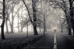Bike Path (b/w) (Chris Rubey) Tags: uk autumn winter blackandwhite fall nature leaves silhouette sepia landscape scotland edinburgh shadows seasons fineart foggy coldweather themeadows splittone blackwhitephotos nikond800 chrisrubey