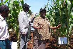 stakeholdermeeting-kisumu(2-3June2005) 003