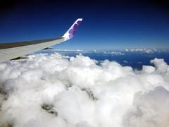 Hawaiian 767-3CB/ER wing (kenjet) Tags: ocean clouds airplane pacific wing pacificocean hawaiian boeing winglet 767 onward 767300 hawaiianairlines n590ha 7673cb 7673cber