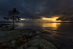 Lone tree - Bergviksudde (- David Olsson -) Tags: november sunset lake tree nature water silhouette night clouds reflections dark landscape nikon rocks darkness sundown cloudy sweden tr