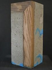 (peltier patrick) Tags: wood blue sculpture macro grey gris berry lumière bleu sculptures bois ciment peltierpatrick mortiercoloré