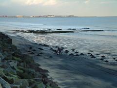 Raking up the Sea Coal (Much Ramblings) Tags: seatoncarew hartlepool seacoal