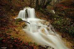 Cascade sur un affluent du ruisseau de la Goulue a Cussey sur Lison (francky25) Tags: de la du un sur cascade franchecomté affluent doubs ruisseau lison goulue cussey