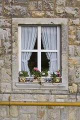 Dos gnomos (Moraiya) Tags: flowers flores window gnome gnomo