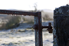 Gate (duncan_ireland) Tags: winter scotland inverness farr strathnairn inverarnie