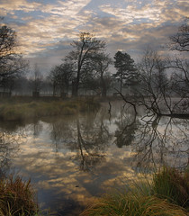 Last light (Chris Beesley) Tags: cheshire nt nationaltrust dunhammassey pentaxk5 penatxsmcda1645