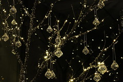 Diamond Tree (pine apple lime) Tags: uk decorations light black tree apple pine night diamonds dark lights scotland edinburgh bokeh fake diamond led jewellery faux lime jewels fairylights bauble jewel baubles pineapplelime