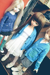 (shibya(   ` )) Tags: little may olive valentine monica honey harmony tf bluefairy irin tinyfairy
