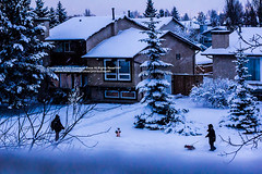 SNOW  ! ( SUMAYAH  ) Tags: ca camera city snow canada canon landscape photography eos flickr edmonton explore alberta pro   550d sumayah    thecityofedmonton     flickrsumayah  sumayahessa