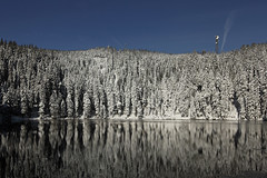 winter dream (crazyhorse_mk) Tags: winter sky mountain lake snow reflection nature water forest germany landscape baden schwarzwald blackforest hornisgrinde badenwuerttemberg mummelsee