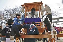 218-kanamara matsuri wakamiya shrine (reflexseitre) Tags: japan matsuri giappone kawasaki kanamara wakamiya