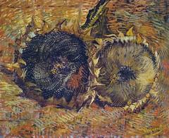 Vincent van Gogh - Sunflowers Summer, 1887 at Kunstmuseum Bern Switzerland (mbell1975) Tags: summer art dutch museum painting schweiz switzerland gallery museu suisse vincent arts muse musee m sunflowers impressionism bern museo van gogh berne schweizer impression impressionist muzeum finearts kunstmuseum mze 1887 museumuseum