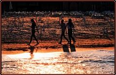 Sunset at Black Sea (Ioan BACIVAROV Photography) Tags: bacivarov ioanbacivarov bacivarovphotostream interesting beautiful wonderful wonderfulphoto nikon woman women girl girls fille filles fata fete glamour sexy beach summer fashion moda mode blacksea romania sea sun