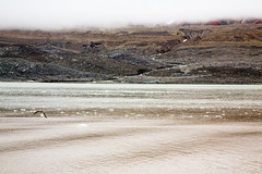 Sea Coast Landscape (danielfoster437) Tags: arctic arcticocean articcircle landscape oceanlandscape spitsbergen svalbard