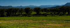 Hay Season (jfusion61) Tags: colorado hay farm agriculture mountains nikon d810 hartsel pike national forest summer grass 2470mm