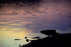 Get lost in the reflection of the sunset.. (renkata23) Tags: sunset lake water reflection colors colorful colours color colour mood calm peaceful peace nikon nikonbulgaria bulgaria outdoor