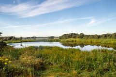 Aberlady nature reserve (NSJW photos) Tags: aberlady aberladynaturereserve loch lake water reflections reeds scotland sky nsjwphotos