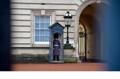 DSC_2905 (daturiemme) Tags: london londra uk england inghilterra city street winter