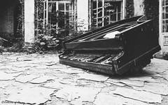 Piano Palace (C O L O U R S O F D E C A Y) Tags: abandoned abandonedplaces piano urbex urbanexploration forgotten lost palace poland urbexpoland abandonedpoland blackandwhite monochrome bw