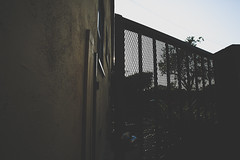 MATTE COLLECTION (DigiSteez) Tags: matte canon sigma wide lens backyard location mark 3 mark3 blackwhite bwlove instagram jordan sneaker head nike bike sky rdigital ron ramsey