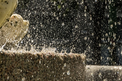 fountain of youth? (Morag.) Tags: fountain water splash milan italy italia italie milano fontana nikon d3300 nikkor ha