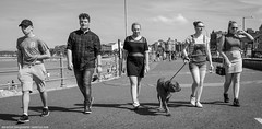 The Usual Suspects (Ian Betley Photography) Tags: street photography morecambe bay lancashire pier promenade scene candid five 5 dog usual suspects england uk black white bw canon eos 5d mark iii ef24105mm f4l is usm 45 11600 iso focal length 24mm