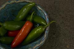 Small bowl with peppers (karenchristine552) Tags: ceramics clay gardening pennsylvania peppers philadelphia pottery universitycity westphiladelphia