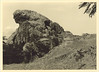 098 (University Library of Kyiv-Mohyla Academy) Tags: archives orientalismus nature