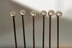 In a row 1 (jamesallen9) Tags: closeup craft detail equipment group macro many metal pin pins repair sew sewing sharp silver steel straight tailor tool row macromondays inarow paperboat