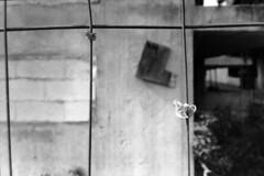PARCELLE 16-034_21 (gyjishukke) Tags: chantier ballon baudruche nud maille analog argentique believeinfilm ilford delta400 800iso selfdevelopment hc110b 10 20 scanlowdef minoltax700 bw