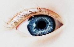 Blue (PattyK.) Tags: eye iris blue nikon ilovephotography myson    amateurphotographer photoscape