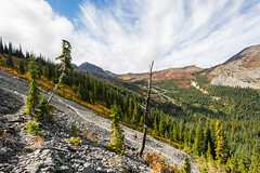 CAN_3127 (alexandre.thissen) Tags: coquihalla hiking illalmeadows nath