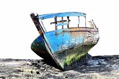 Coque abandonne (hboutrouille) Tags: bateau coque couleurs abandon surexposition golfedumorbihan ledeberder
