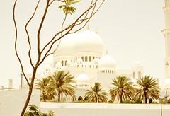 Abu Dhabi and Dubai (poymeetsworld) Tags: dubai abu dhabi united arab emirates luxury travel