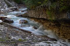 DSC_6486 (AmitShah) Tags: banff canada nationalpark